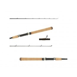 Shimano Teramar South East Inshore Spinning Rods